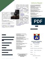 SIMBOLISMO.docx