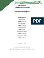 Informe Quimica Inorganica 09-03-16