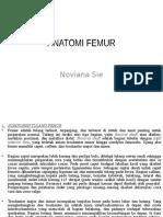 ANATOMI+FEMUR