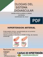 Patologias Cardiovascular