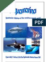Aqua Marina Flyer