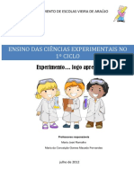 cinciasexperimentaisno1ciclo20122013-121028114507-phpapp01