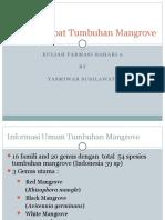 Potensi Mangrove