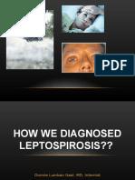Leptospiradonnie Interna New