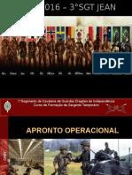 Apronto Operacional IIB - UD VIII ASS IV