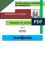 Taxonomía de Beer