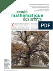 De la beauté mathématique des arbres