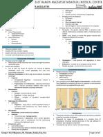2 PARA 1 - Protozoa - Flagellates