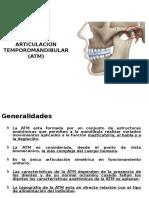 Anatomia ATM