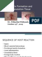 Granulation Tissue 13102015