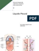 Líquido Pleural