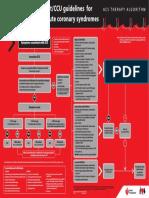 Emergency Flow Chart Acs_chart0506