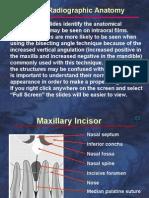 Radio Graphic Intraoral Anatomy