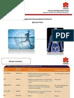 12. Regulación Neuroendocrina Frente Al EF