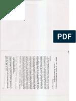 Frigerio_Delia_y_Negros_2009.pdf