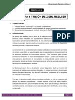 PRÁCTICA 8. Mecanismos de Agresión y Defensa I - 2015 - II