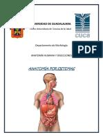 Anatomía por sistemas_ Bloque VI (1).pdf