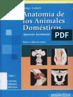 Anatomia de los animales Domesticos -Tomo 1 - Konig.pdf