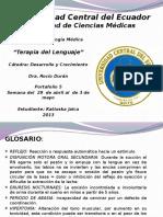 reflejos-131104175236-phpapp02