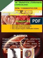 Placenta y La Expo