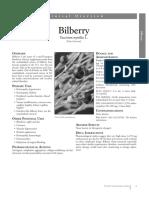 Bilberry 3 12