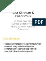 Akut Skrotum & Priapismus