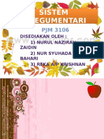 Sistem Integumentari (2)