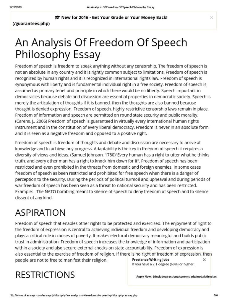 Freedom of Speech Philosophy Essay | Freedom Of Speech | Public ...