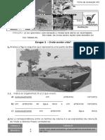 Ficha-1-Mat-ter Forma e Revestimento -1.doc