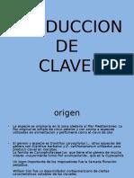 Producción de Clavel