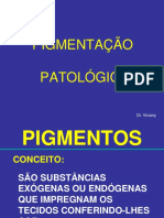 MED_2009_Pigmentacao_Patologica_Calcificacoes_Dr._Viciany.pdf
