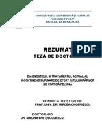 Rezumat_ene (Niculescu( Simona