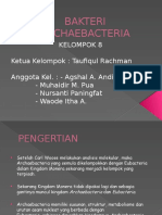 Bakteri Archaebacteria