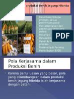 4. Manajemen Produksi Benih Hibrida_MPB