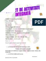 ACTIVITATE INTEGRATA