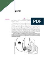 Telecurso 2000 - Ensino Fund - Português - Vol 04 - Aula 88