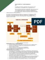 Toxicocinética Conceptos Pasos Caract