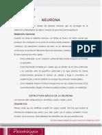 Lectura Semana 2- Neurona y Sinapsis