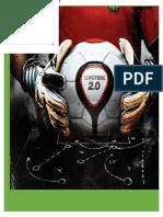 Fútbol Club Interfe