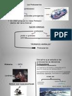 Presentación1 PROTOZOO