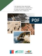 Plan de Medidas Conservacion Piquero Final