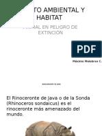 Impacto Ambiental y Habitat Maximo