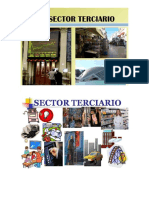 Sectores productivos.docx