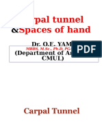 2016.Edited.lecture.mbbs.Carpal.tunnel.spaces.of.Hand