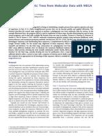 PhylogeneticTree1.pdf