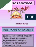 Ppt de Los Sentidos 1 Basico (1)