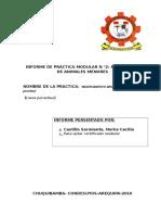 Informe Del Proyecto Del Cuy