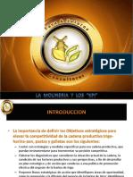 Ejemplo KPI.pdf