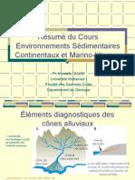 Résumé Du Cours Environnement & Sédimentaires