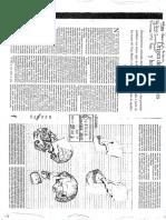 20 - Pilbeam - Origen de Hominoideis y Hominidos